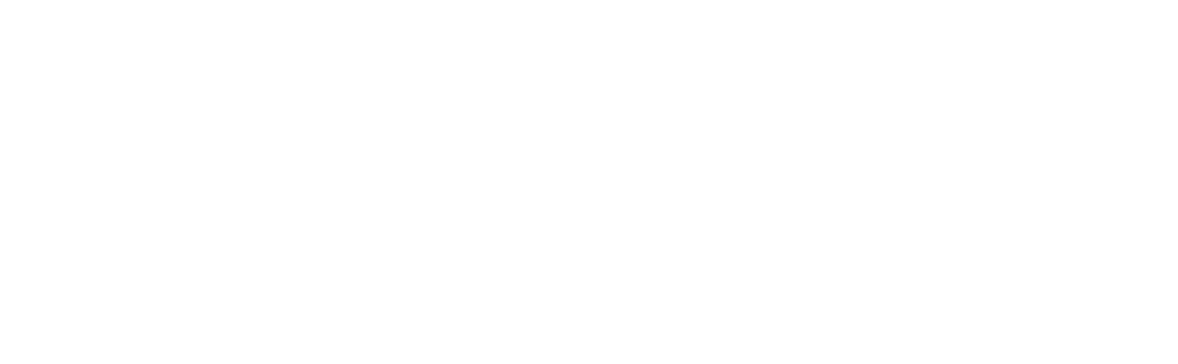 IES 2021 | International Electronics Symposium